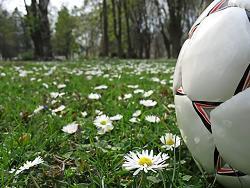 Grassroots football faces tough future